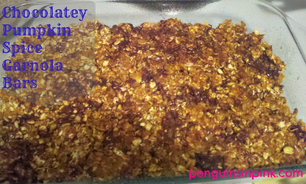 Chocolatey Pumpkin Spice Granola Bars.  A easy, healthy, and yummy alternative to prepackaged granola bars that your family is sure to love.