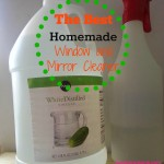 The Best Homemade Window and Mirror Cleaner