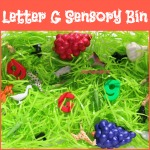 "Letter G Sensory Bin - This sensory bin has it all giraffes, gorillas, geckos, geese, and other items beginning with letter ""G""."