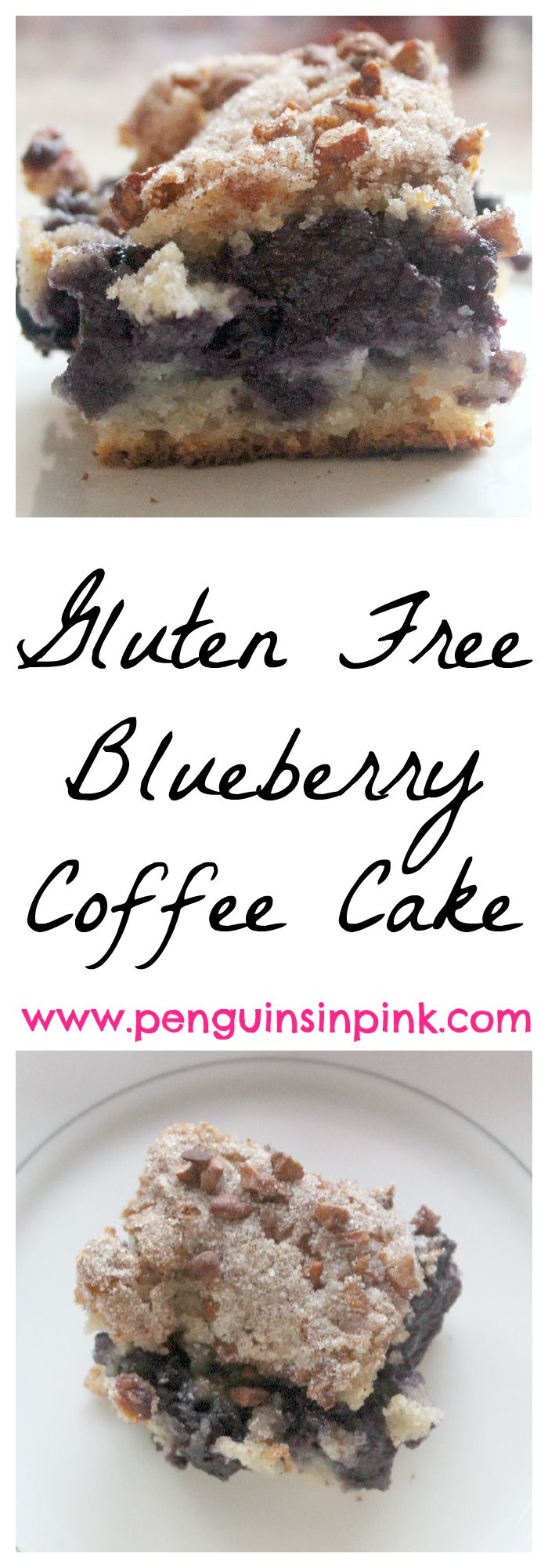 Gluten Free Blueberry Coffee Cake - Sweet blueberries, cinnamon, and pecans layered between a crumbly crust. Blueberry coofee cake is perfect for brunches, afternoon teas, or wedding and baby showers. #glutenfree #blueberries #recipe