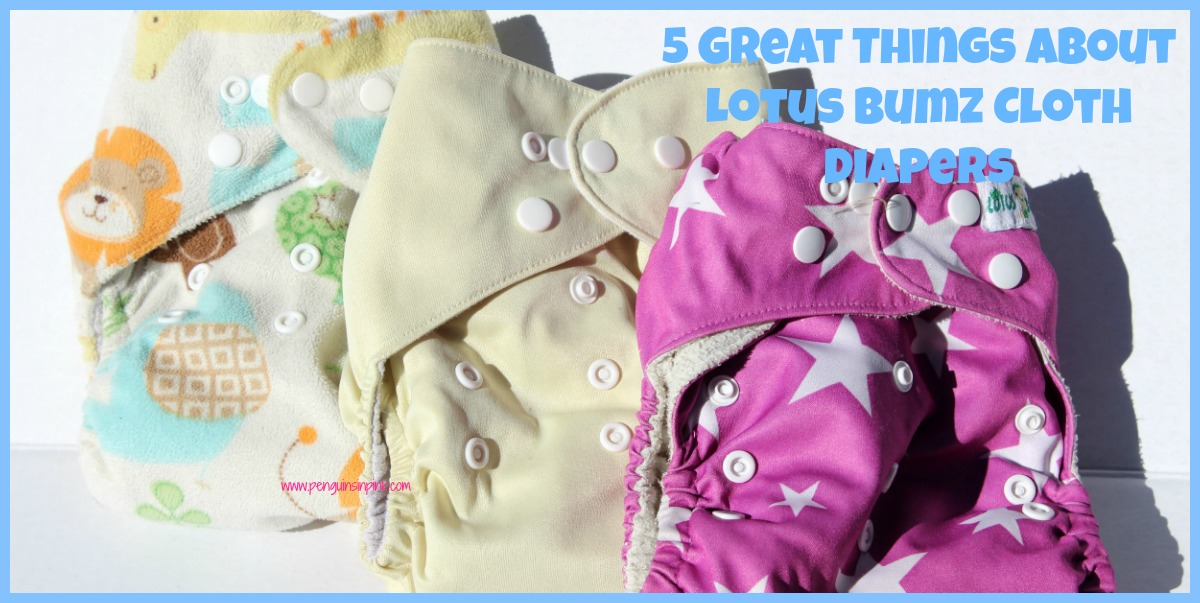 A detailed review of Lotus Bumz Cloth Diapers including 5 great things about them and the 1 thing we didn't like about them