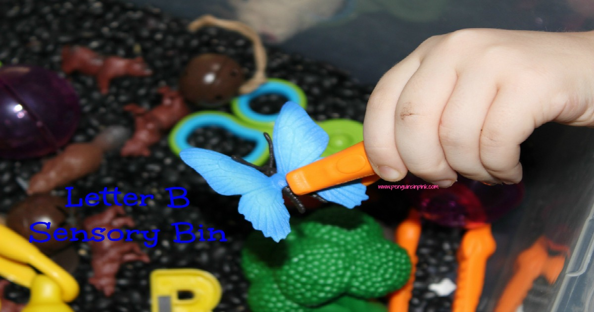 """Letter B Sensory Bin - A fun sensory bin filled with bears, bells, balls, beans, and other items that start with letter """"B"""""""