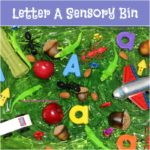 A messy Letter A Sensory Bin filled with apples, alligators, arrows, acorns, and many more letter A items. This bin is so much fun and the perfect addition to any Letter A themed lesson.