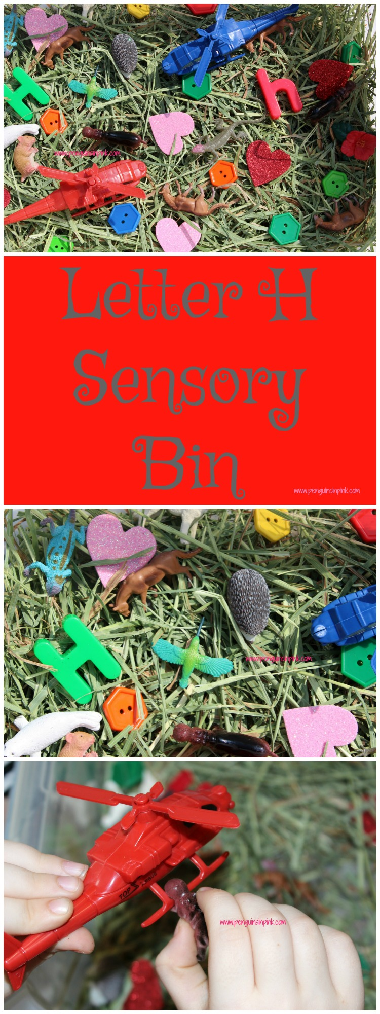"Letter H Sensory Bin - This sensory bin has it all horses, helicopters, hexagons, hippopotamus, and other items beginning with letter ""H""."