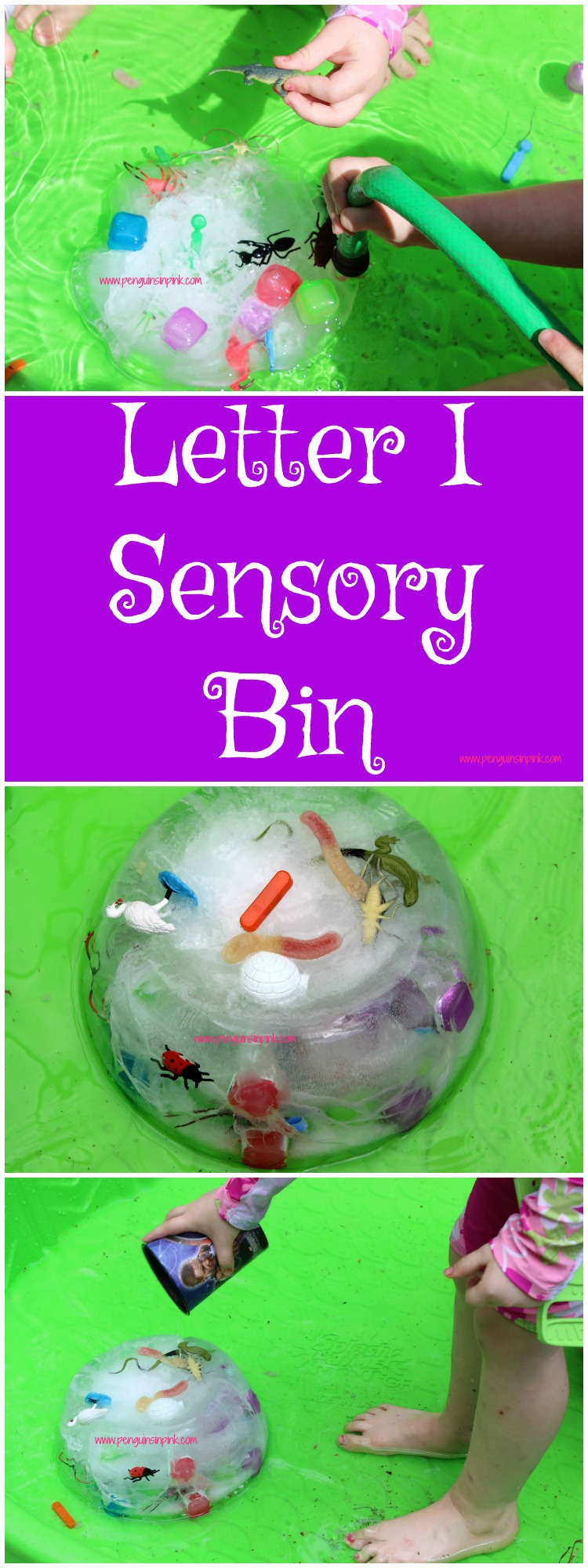 "Letter I Sensory Bin - This sensory bin is perfect for cooling off on a hot day. It is filled with items beginning with the letter ""I"" like iguanas, ibis, and insects."