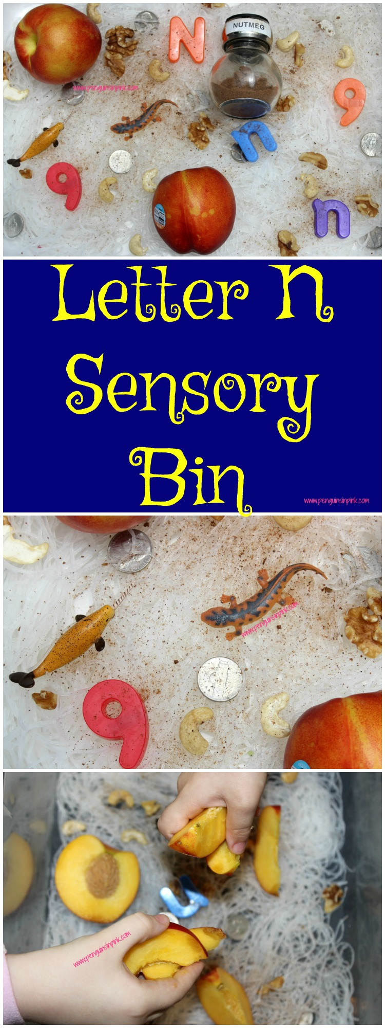 "Letter N Sensory Bin - This noodle based sensory bin has it all newt, narwhal, nickels, and other items beginning with letter ""N""."