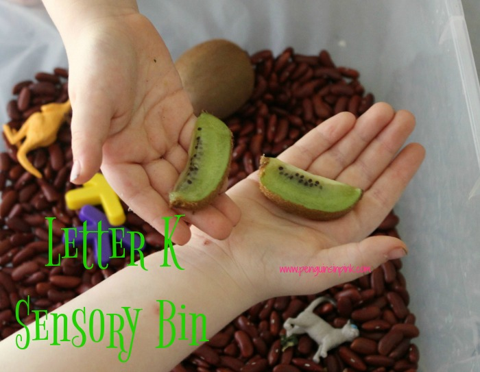 "Letter K Sensory Bin - This sensory bin has it all kangaroos, koalas, kittens, and other items beginning with letter ""K""."