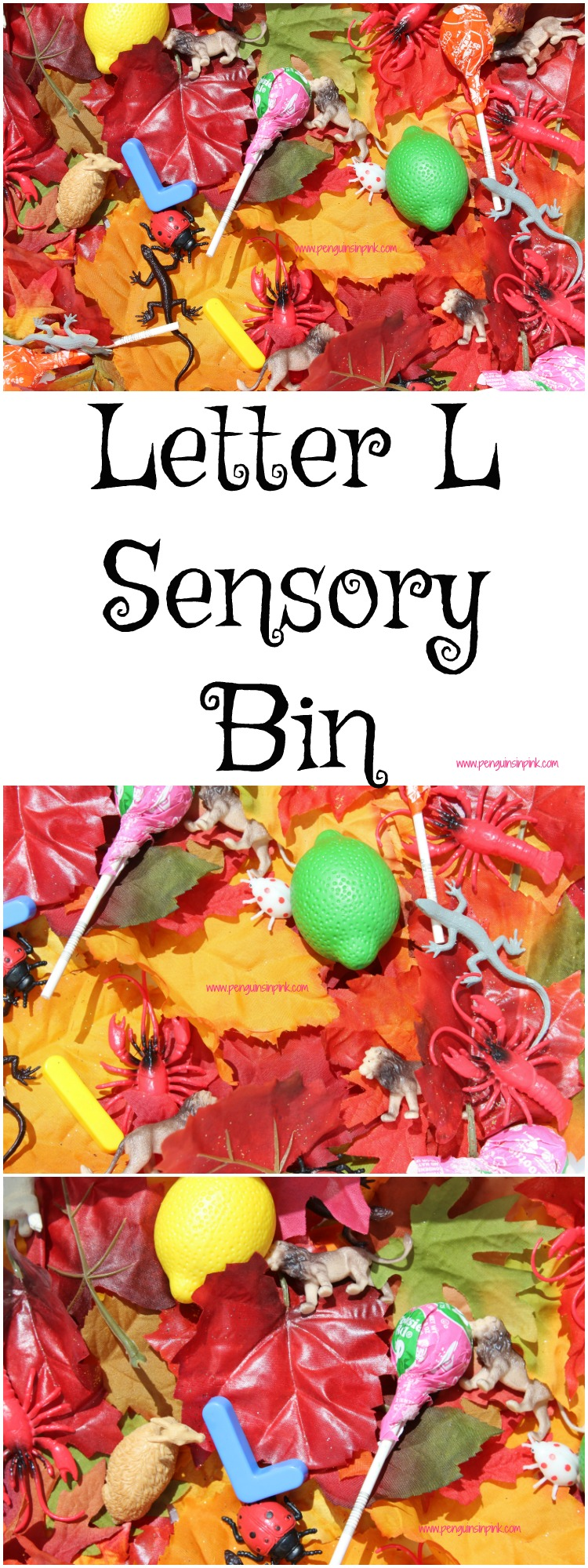 "Letter L Sensory Bin - This sensory bin has it all lions, lady bugs, lizards, and other items beginning with letter ""L""."