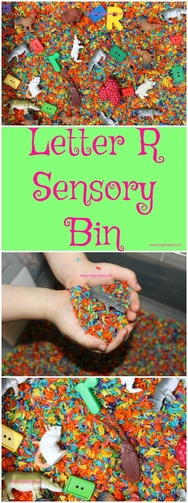 "Letter R Sensory Bin - This rainbow colored rice based sensory bin has it all rabbits, rectangles, rhinoceroses, and other items beginning with the letter ""R""."