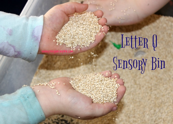 "Letter Q Sensory Bin - This quinoa based sensory bin has items beginning with letter ""Q"" like quarters and quetzal."