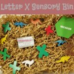 "Letter X Sensory Bin - This shredded paper based sensory bin has Xenoceratops dinosaurs, fox, and other items that have the letter ""X"" in them."
