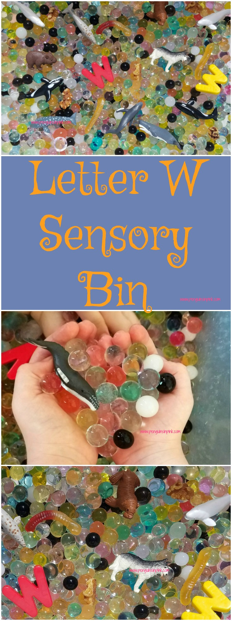 "Letter W Sensory Bin - This water bead based sensory bin has it all whales, walnuts, walrus and other items beginning with the letter ""W""."