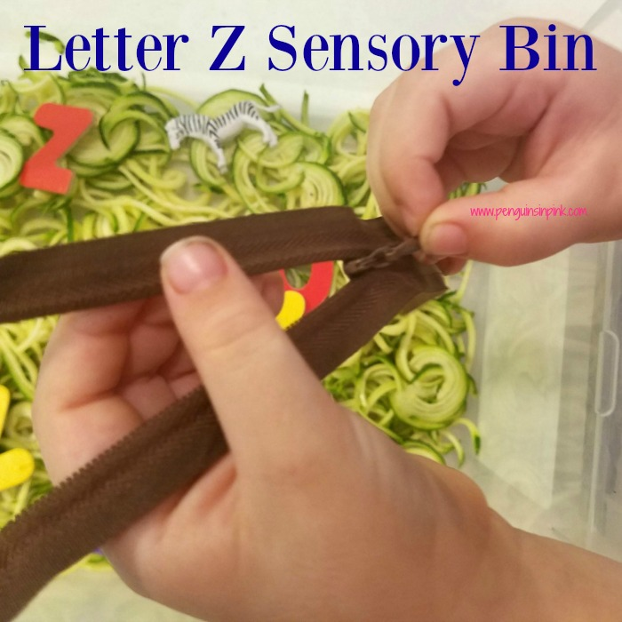 "Letter Z Sensory Bin - This zoodles based sensory bin has zebras, zippers, and other items beginning with the letter ""Z""."