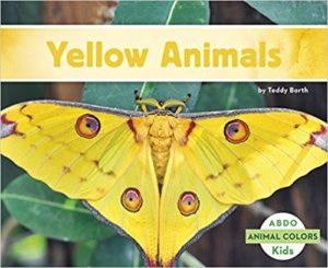 Yellow Animals by Teddy Borth
