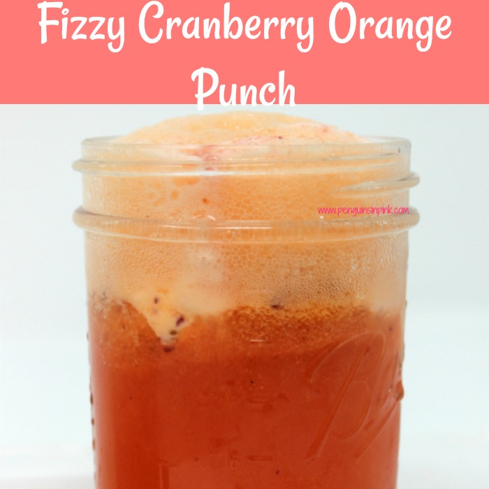 Fizzy Cranberry Orange Punch