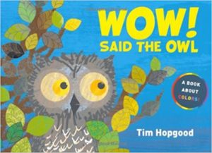 Wow! Said the Owl: A Book About Colors by Tim Hopgood