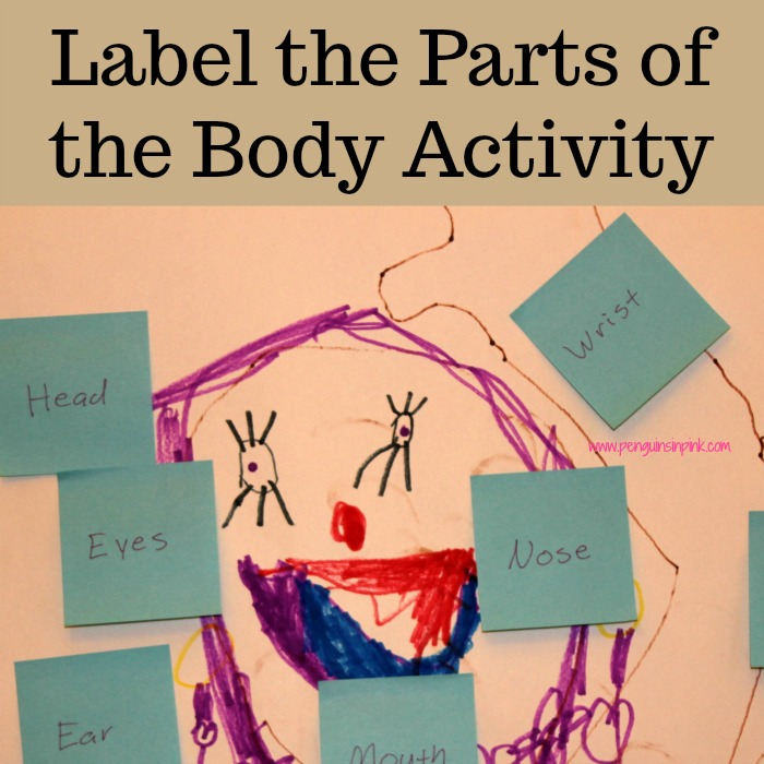 Label the Parts of the Body Activity is a fun project that encompasses science, art, reading, and writing while also teaching about the various part of the body. It is perfect for curious preschoolers through early elementary school aged children.