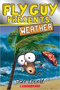Fly Guy Presents Weather by Tedd Arnold