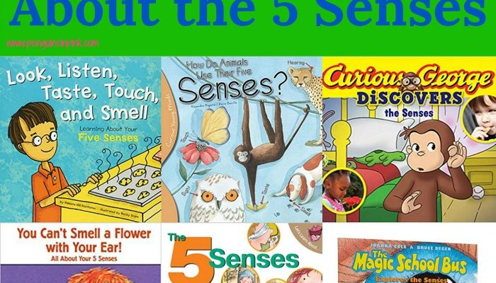 12 Picture Books About the 5 Senses