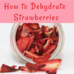 How to Dehydrate Strawberries is an easy tutorial recipe for making delicious dried strawberries in a dehydrator.
