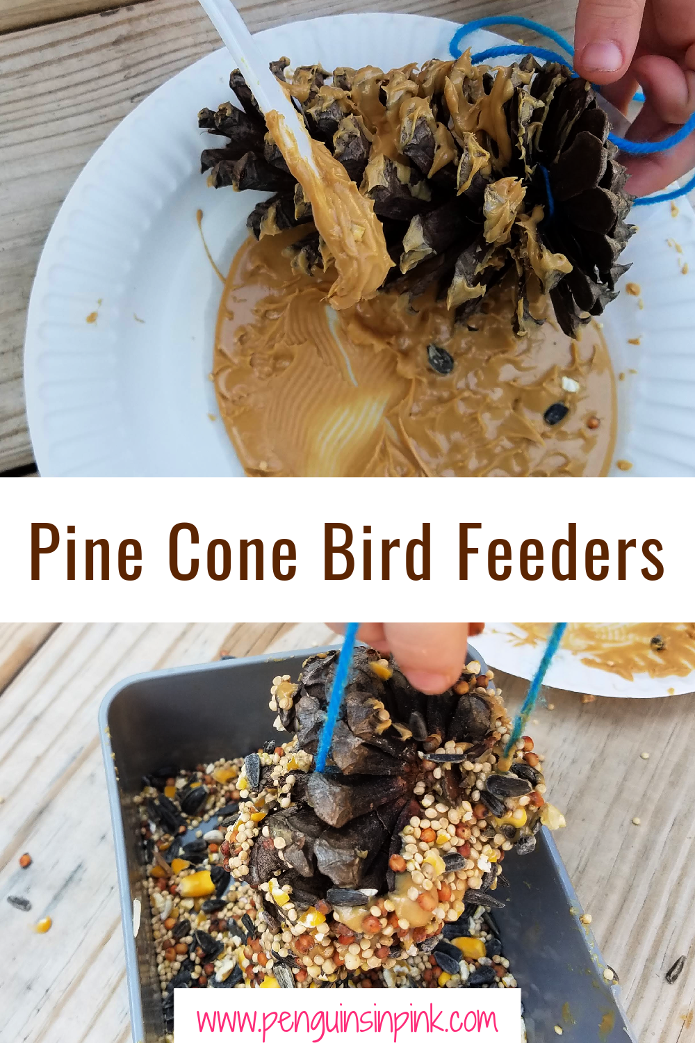Pine Cone Bird Feeders are an easy and fun DIY project for kids. All you need is pine cones, peanut butter and bird seed