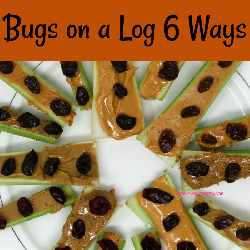 Bugs on a log 6 ways is an easy, kid friendly, tasty snack that uses different nut butters and dried fruits to create a protein packed treat.